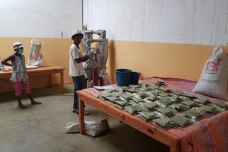 operai preparano sacchetti sotto vuoto di porvere di moringa